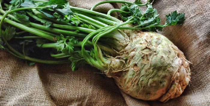 Freshly Harvested Celeriac
